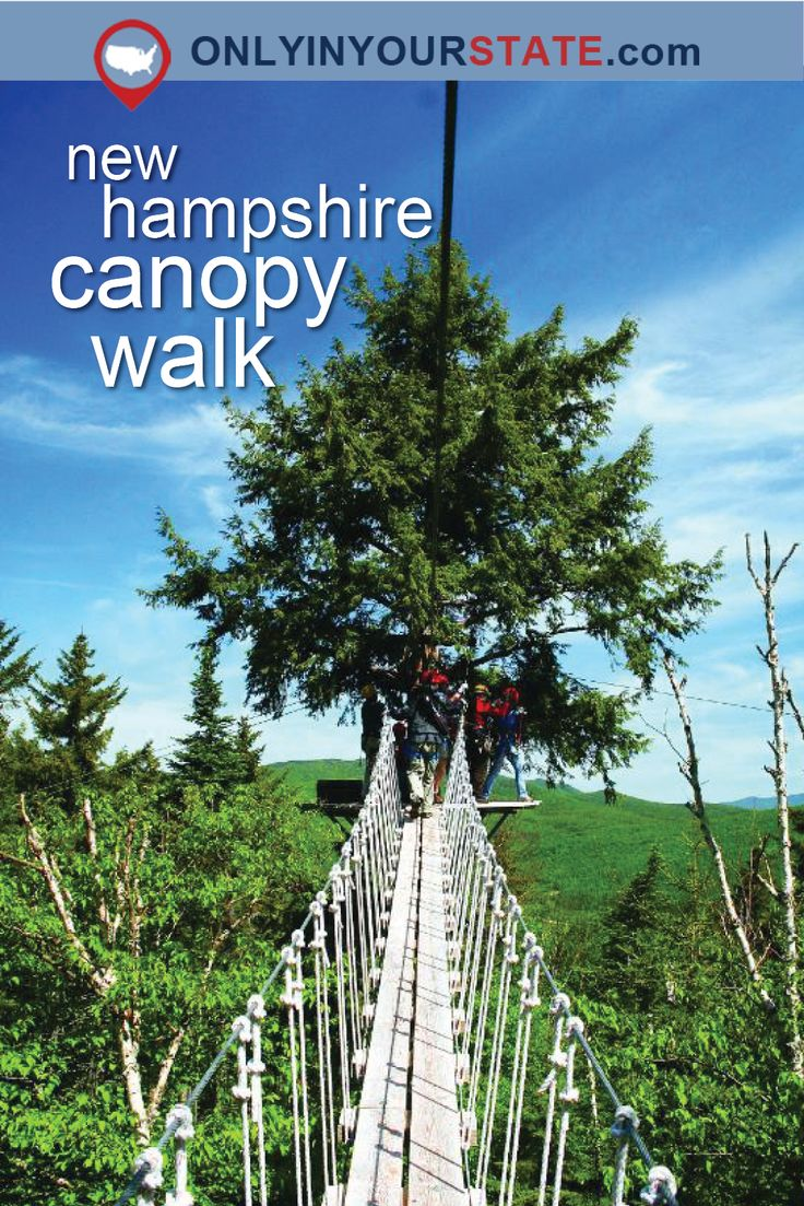 Travel | New Hampshire | Attractions | Sites | Photography | Things To Do | Places To See | Unique | Canopy Walk | Adventure