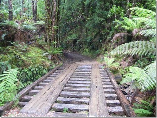 Walk to Montezuma Falls | CaravanCampingOz.com