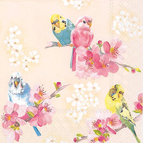 """Ideal Home Range 20 Count Cocktail Napkins, Parakeets, 5""""... https://www.amazon.com/dp/B01BK7Q92E/ref=cm_sw_r_pi_dp_x_On9SxbY1BT119"""