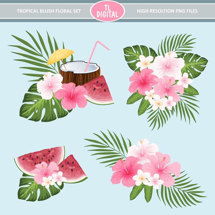 Tropical Flowers Clipart Set - Tropical Blush - Pink Flower Tropical set - Hibiscus Clipart - 18 design pieces by TLDigital on Etsy