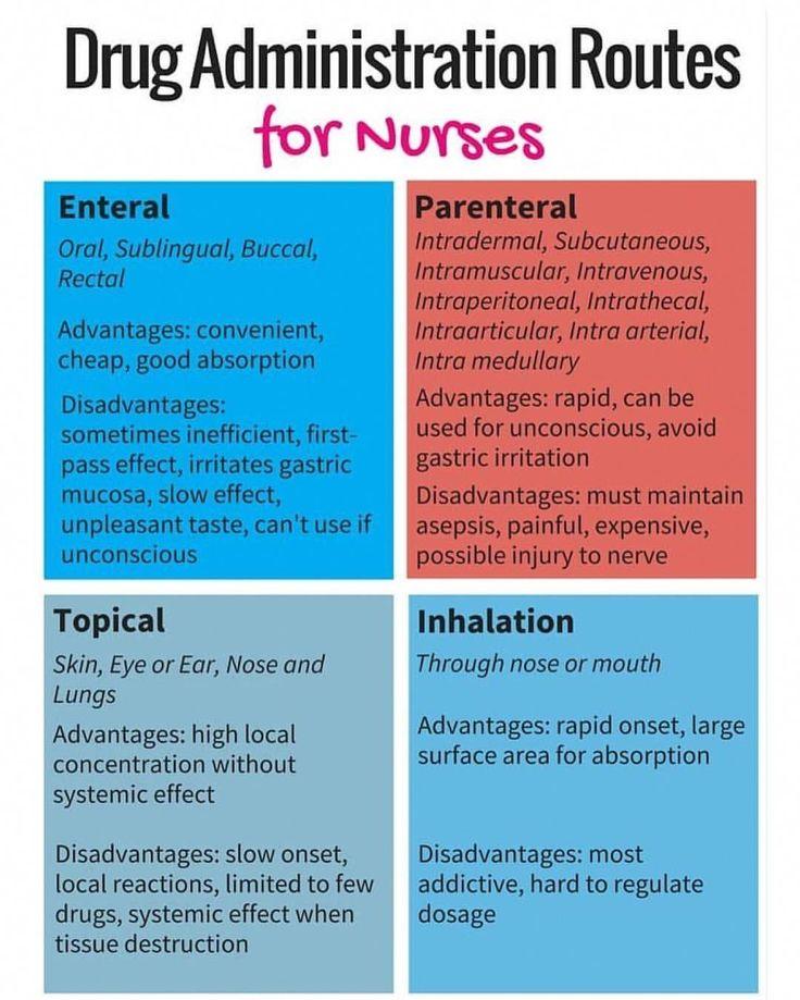 6 Month Certificate Programs That Pay Well #NursingSchool ...