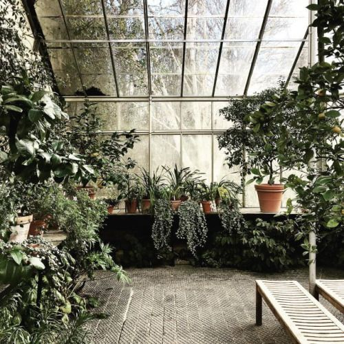 Modern Greenhouse With Old Fashion Tiles   See Aestate Part 29