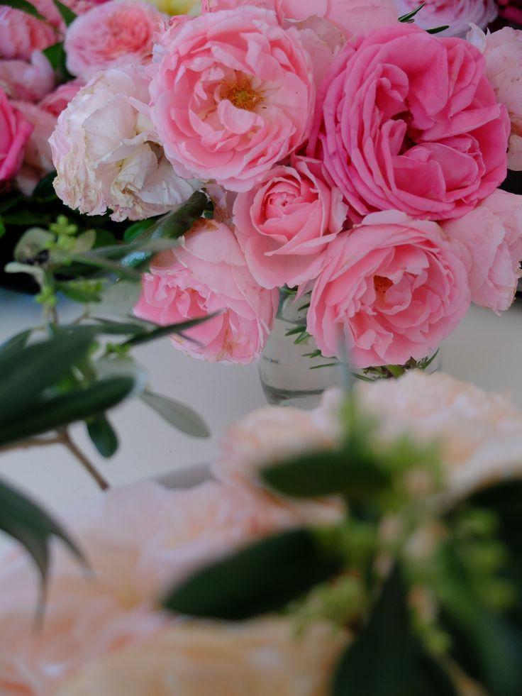 Roses anciennes, centre de table, branche d'olivier