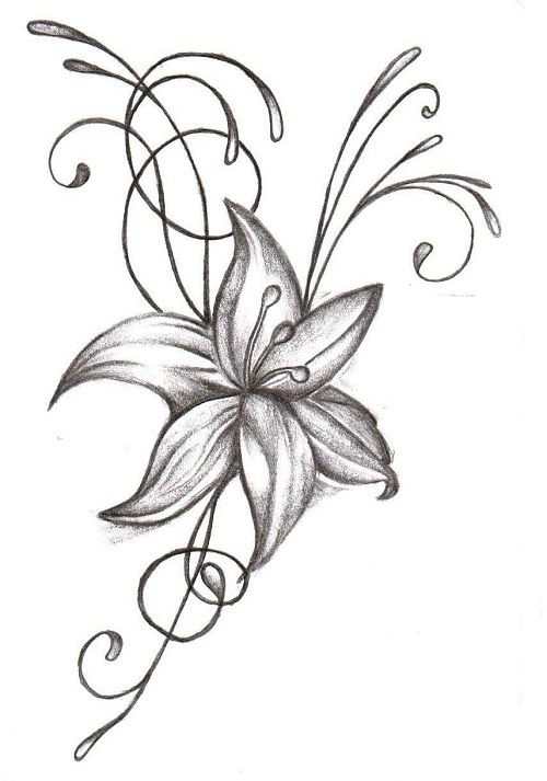 Best 25 Easy flower drawings ideas on Pinterest Flower drawings