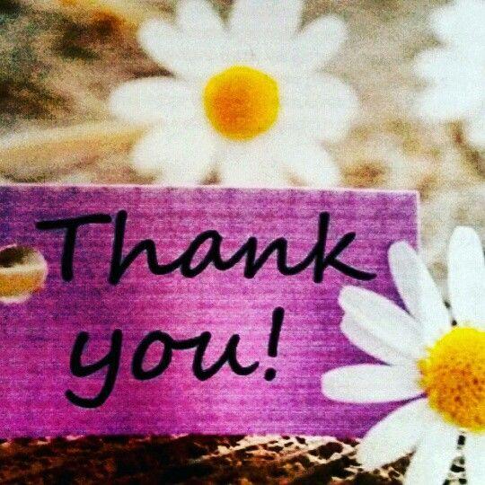 Ευγνωμοσύνη και αγάπη! 😀 💖 🌴 🎶 #wellnesslife #inspiration #feelgood 💗 www.wellnesslife.gr 🌱 #miracles #feelgood #love #light #faith 🎀