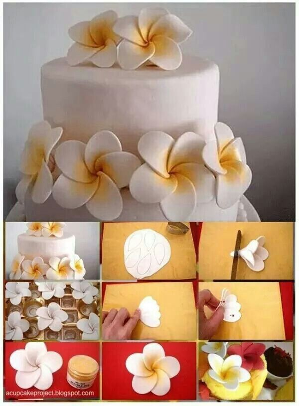 Cake Decorating Gum Paste Recipe : 25+ Best Ideas about Hibiscus Cake on Pinterest Hawaiian ...