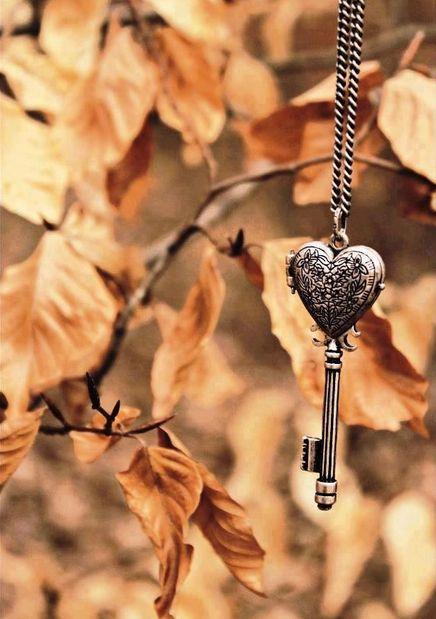 Heart shaped locket and key