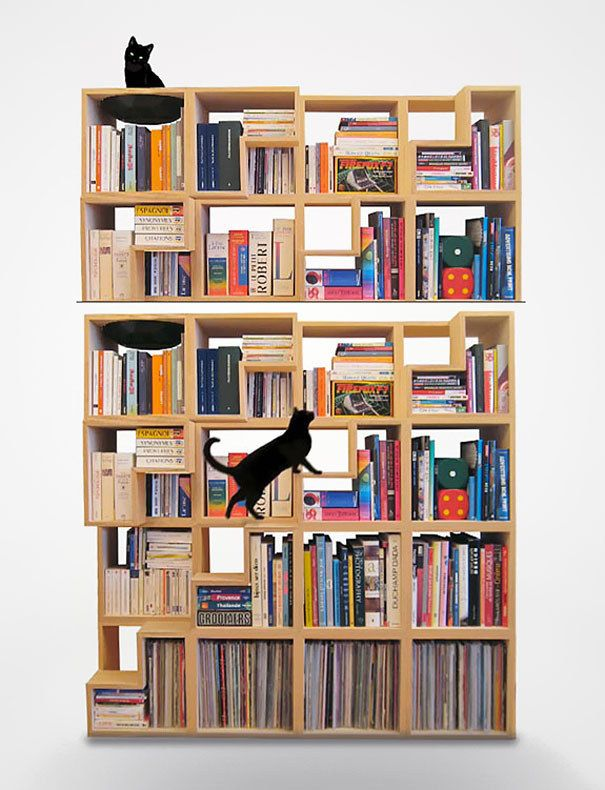 Make your bookshelf cosy for your cats. | 27 Insanely Clever Ways To Display Your Books