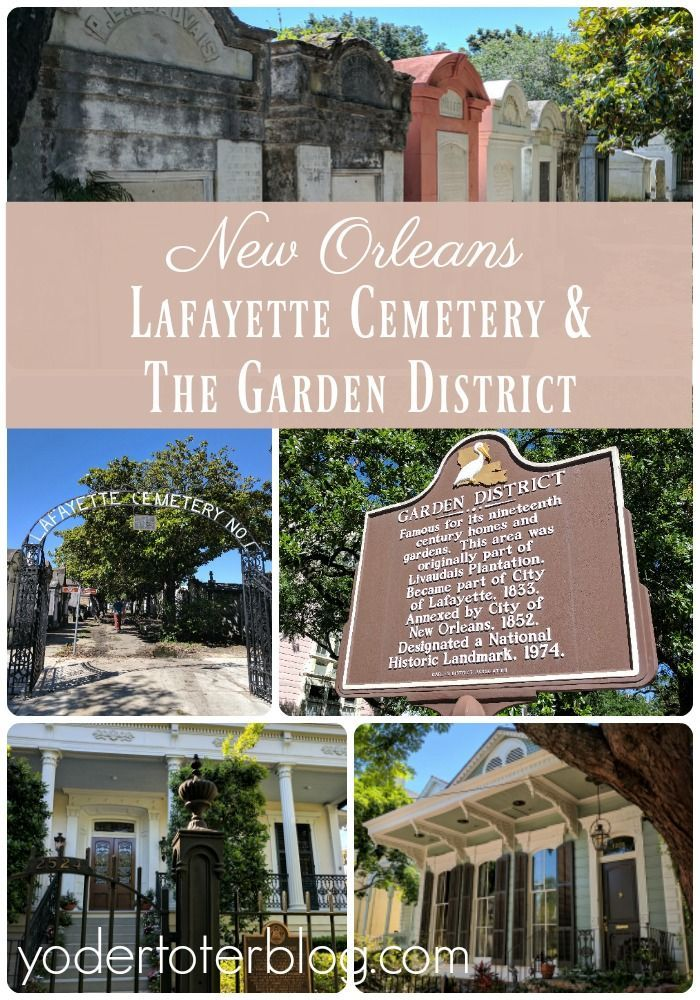 We toured with our three young children and here's our tips for a family-friendly day out. New Orleans, Louisiana, USA