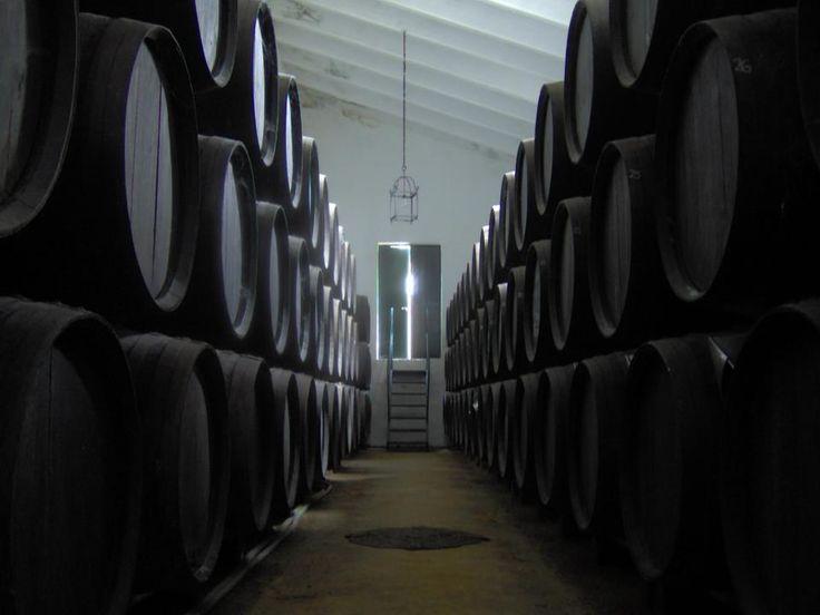 Bodega Montilla. Vino de tinaja, fino, oloroso, amontillado, palo cortado y Pedro Ximénez