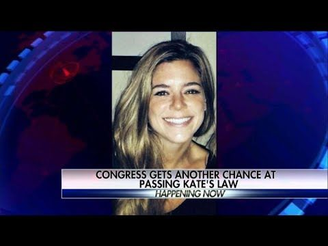 WATCH: Kate's Law Vote in the HOUSE- harsher Punishment on illegal Aliens and Sanctuary Cities - YouTube
