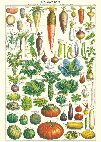 Cavallini Garden, affisch 50x70