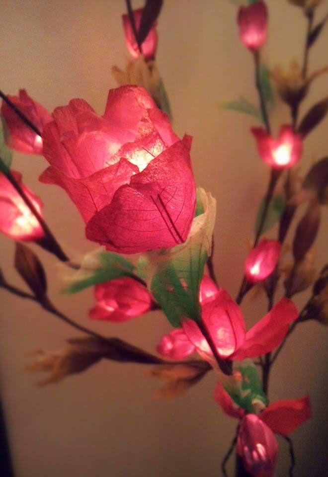 Rose rosse per te, ho comprato questa sera...Buonaseratina  a tutti.  (#Lampade fiori ~ #Bali)