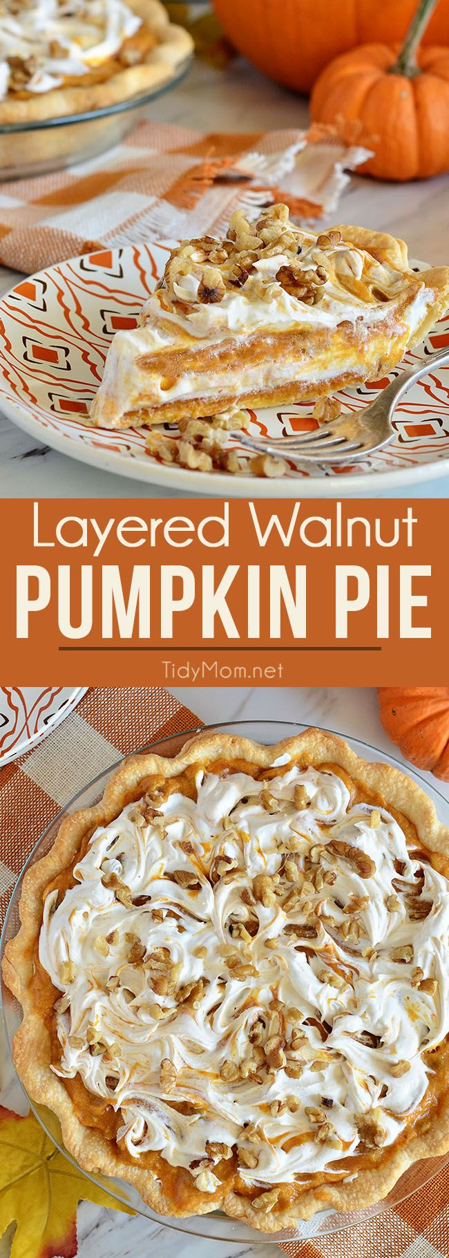 LAYERED WALNUT PUMPKIN PIE has been a long tradition in our family for Thanksgiving. This family favorite pumpkin pie recipe that was handed down to me by my grandpa 30+ years ago. This EASY recipe not your ordinary pumpkin pie, it's a light and fluffy, scrumptious, cold creamy pumpkin pie! A perfect alternative to regular pumpkin pie for Thanksgiving or Christmas dessert. PRINT the recipe at Tidymom.net