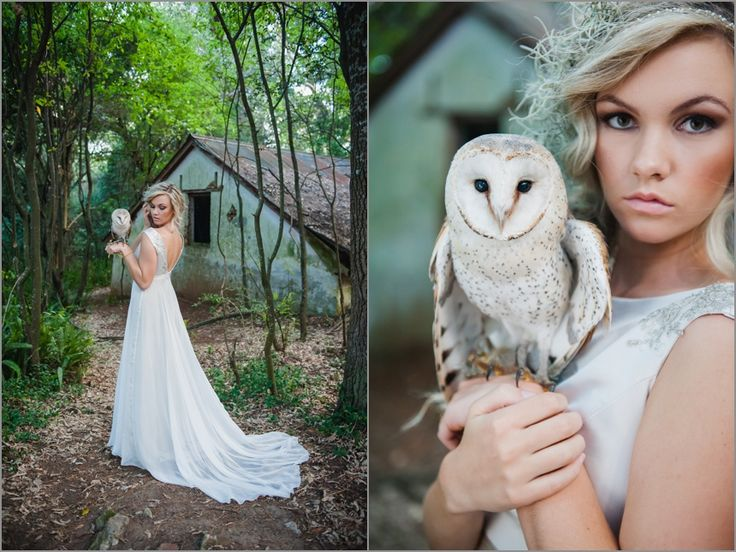 Cape-Town-wedding-Photographer-Lauren-Kriedemann-owl-forest-magical030