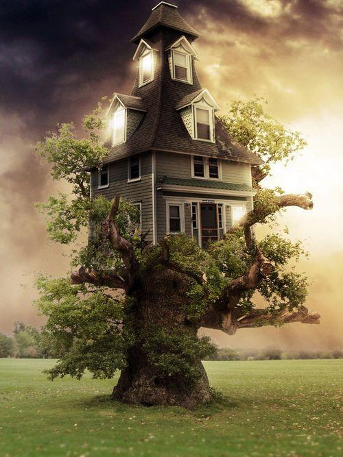 ♂ Dream imagination surrealism  Farm House Tree House