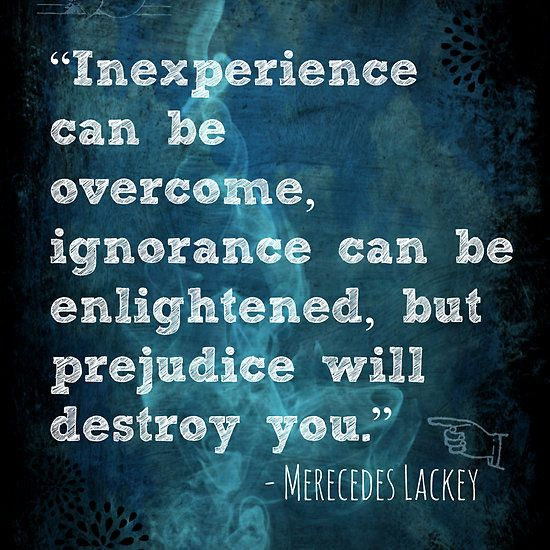 Inexperience Can Be Overcome quote by Mercedes Lackey