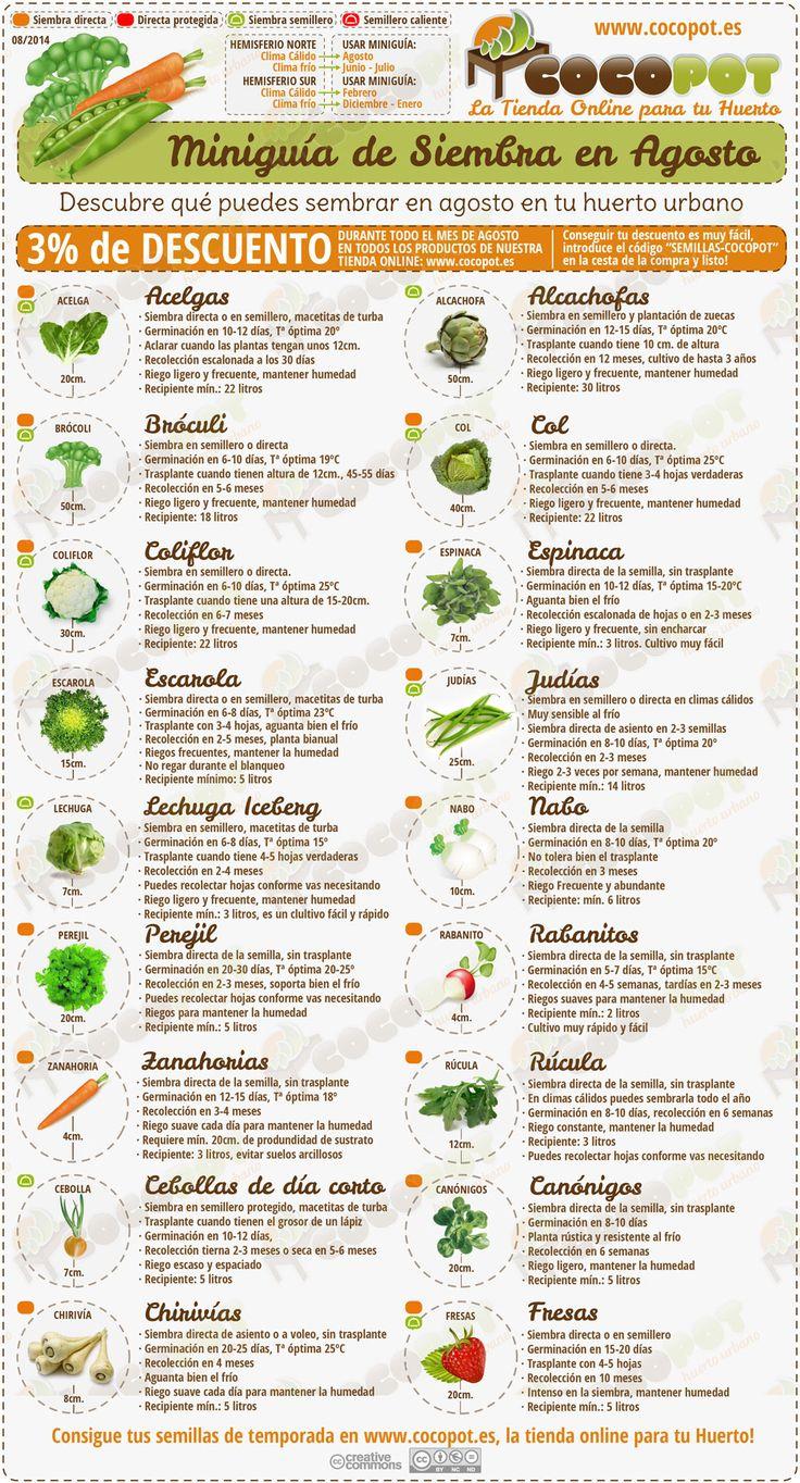 ¿Ya sabes todo lo que puedes sembrar en agosto? Nueva miniguía de siembra de #semillas en agosto, actualizada, con más información y un buen descuento para tus compras ^___^