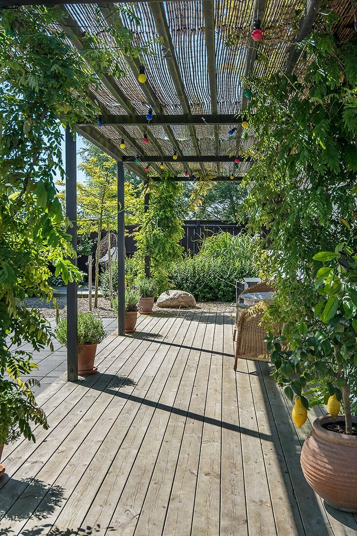 1000  images about trädgårdsinspiration on pinterest