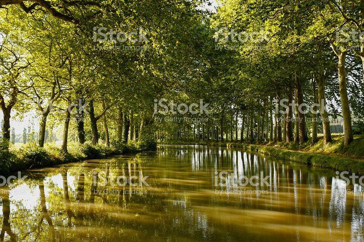 #canaldumidi #autumnlandscape #tourismepaca #travelphotography #green #calm #zen #copyspace #editors #graphics #bloggers #magazine #designer #istockphoto file id 76443685 #iphonesia #editorial #editores #graficos #stockphoto #design # marisaperezdotnet