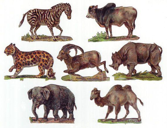 Lot of 7 Victorian Era Die Cut Scraps 1800s Wild Zoo Animals Goat Elephant Leopard via Etsy