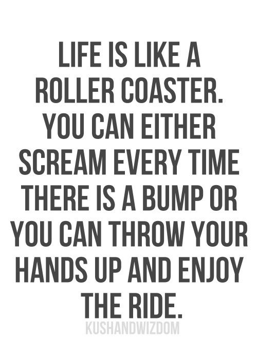 Life is like a roller coaster. You can either scream every time there is a bump or you can throw your hands up and enjoy the ride.