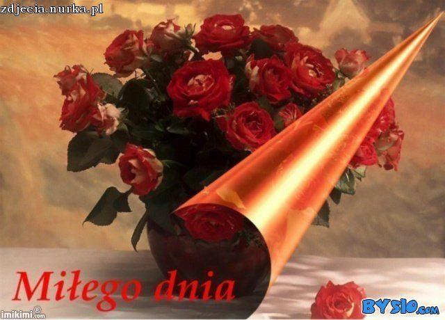 www.bysio.com-i-74.50.124.24-image-images2-full-m5pu-1ip-1.jpg (640×460)