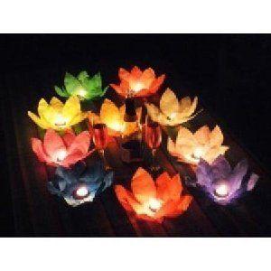 Grobach - Lote de lámparas flotantes (diseño de flor de loto, 10 unidades), varios colores