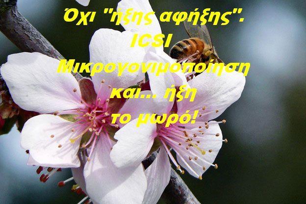"""Όχι """"ήξης αφήξης"""" στα όνειρα της μητρότητας. ICSI (μικρογονιμοποίηση). Δες αν αυτή είναι η λύση για σένα! http://www.ivf-embryo.gr/mikrogonimopoiisi-icsi"""