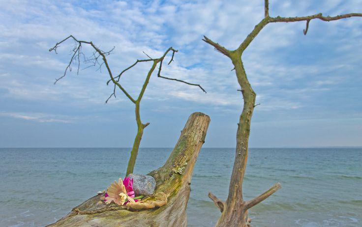 Küste bei Travemünde, germany. #balticsea #travemuende #coast