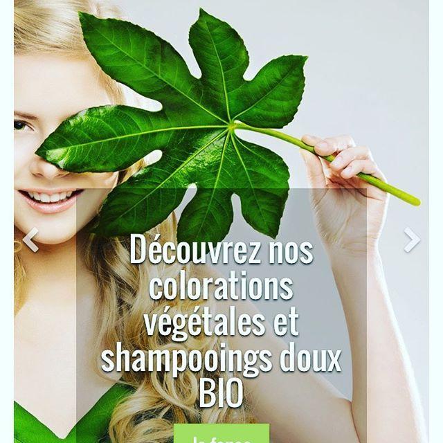 Découvrez nos colorations végétales et nos shampooings bio doux et efficaces!