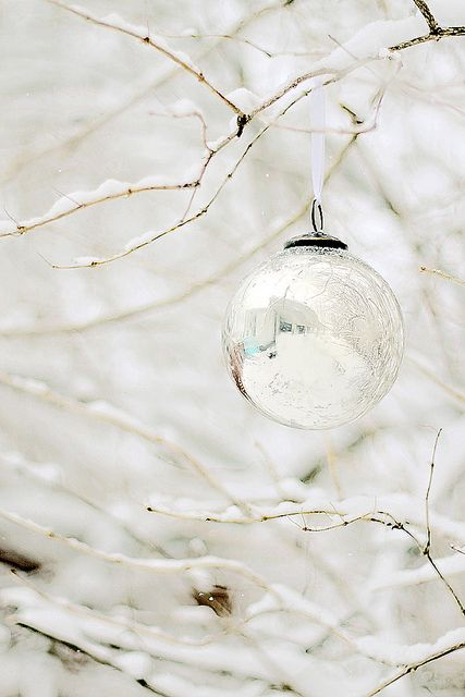 Decorate outside trees