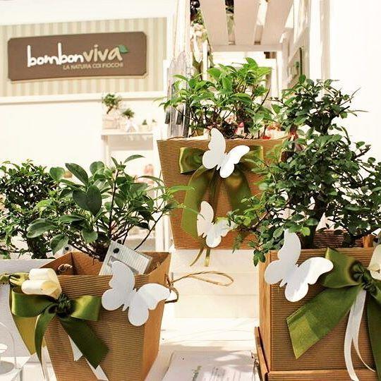 Trova il modo più giusto e adatto alle tue esigenze e  per confezionare le #bomboniere del tuo giorno speciale ... Scopri tutti i modi possibili con #Bombonviva     #wedding #lineagreen  Bomboniera Naturale e solidale Bonsai