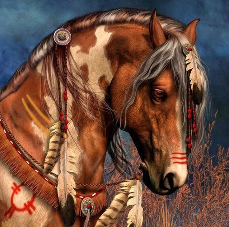 Native American Horse Drawing Indian war horse