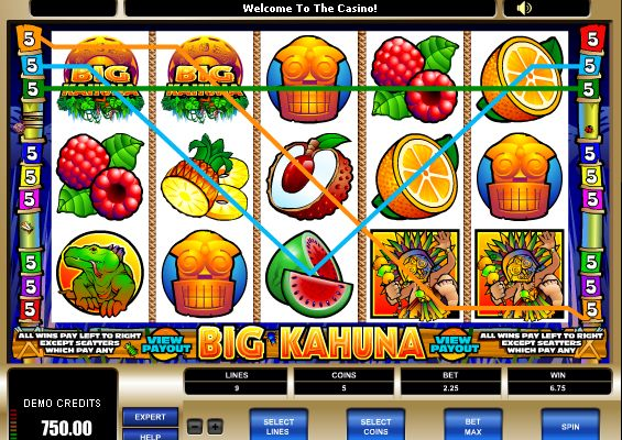 These range from the classic 3 reel slots to the multi-line (5 reel) video slots with amazing graphics and sound.  Read more: http://www.onlinecasinocanada.ca/onlineslots/#ixzz2n957mbMx