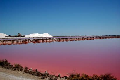 Camargue - Les salines d'Aigues Mortes (Summer 2010 trip)