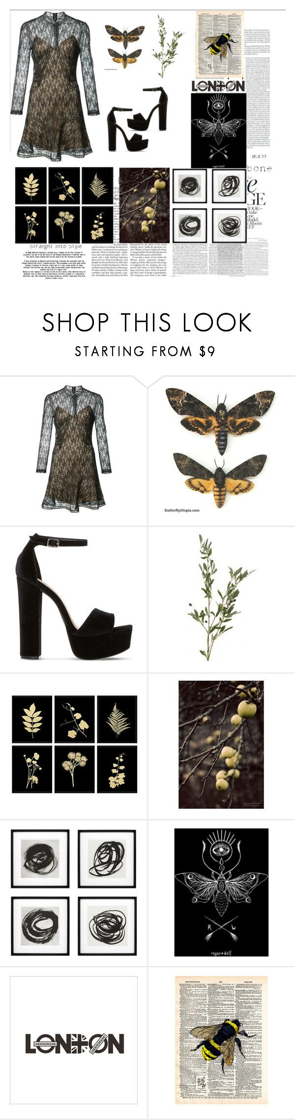 """Bees"" by charlotte-sophie-lensen on Polyvore featuring Alexander Wang, Steve Madden, Nature Home Decor and Eichholtz"