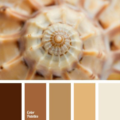 Monochrome Color Palette Of Pastel Brown Shades Is