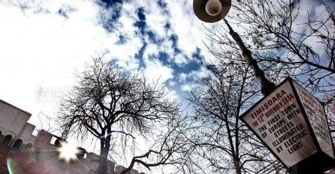 Timisoara Capitala Culturala Europeana: Ce apreciaza timisorenii la orasul lor si ce-i deranjeaza!