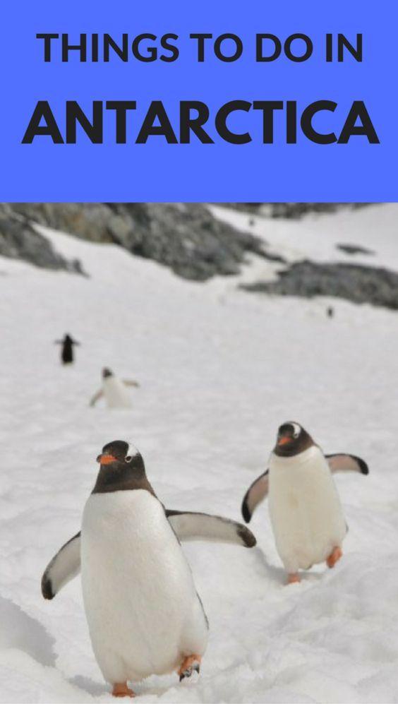 Incredible Things to do in Antarctica. **************************************************************************** Antarctica | Antarctica Travel | Antarctica Activities | Antarctica Cruise | Antarctica Facts | Antarctica Expedition | Antarctica Travel Bucket Lists | Antarctica Travel Cruises | Antarctica Travel Trips | Antarctica Travel Articles| Antarctica Travel Things to do | #Antarctica #penguins #bucketlist