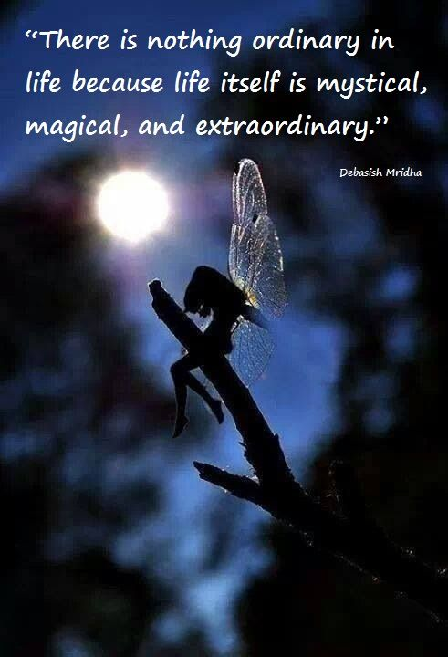 """""""Don't settle for ordinary. Dare to live a magical life."""" Debasish Mridha ☪★"""