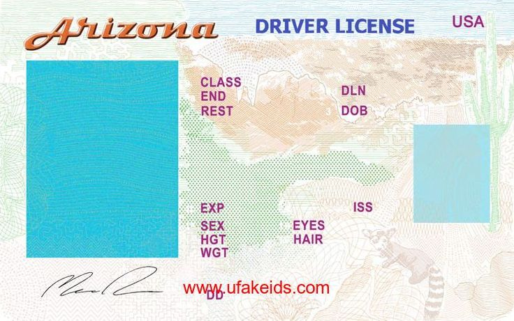Blank drivers license template 6 templates example
