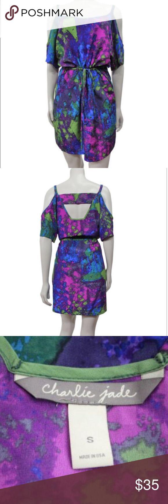 Charlie Jade Cold Shoulder Blouson Dress Flirty 100% silk cold shoulder blouson dress by Charlie Jade. Charlie Jade Dresses