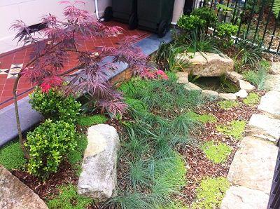 75 best front yard images on pinterest landscaping for Courtyard gardens australia
