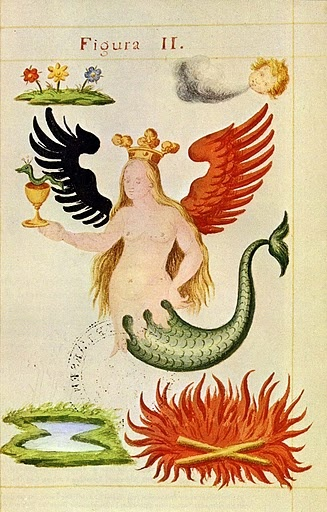 Alchemy: Melusine, the #Alchemical Siren or a typical illustration of a twin-tailed siren or mermaid. This creature is associated with numerous stories and legends, and is imbued with symbolic meaning in alchemy. The most common iteration of the siren is as Melusine, a creature from medieval legend. Melusine (sometimes, Melusina) was, according to legend, a beautiful woman with a disturbing tendency to transform into a serpent from the waist down while bathing.