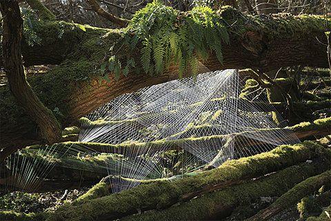 [hu] Man vs Machine: Installations, Forest, Artist, Art Installation, Land Art