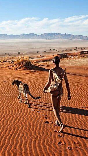 Desierto de Namibia. Foto de Martin Harvey.                                                                                                                                                                                 Más