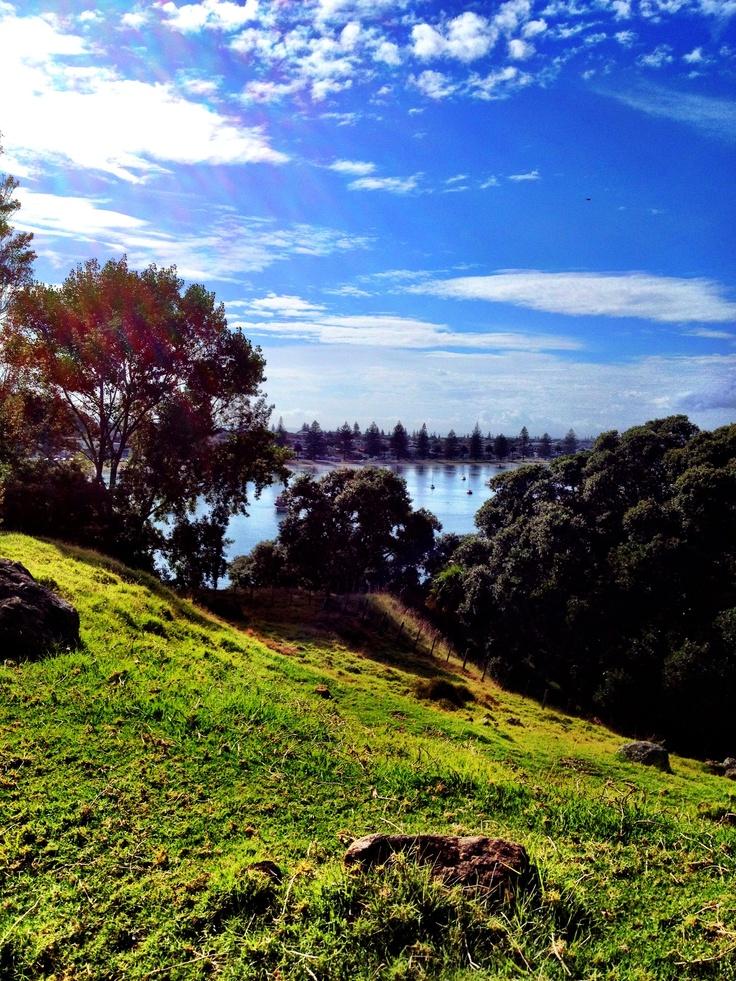 Pilot Bay, Tauranga harbour