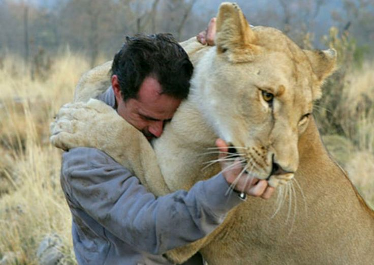 Kevin Richardson I would love to be him.