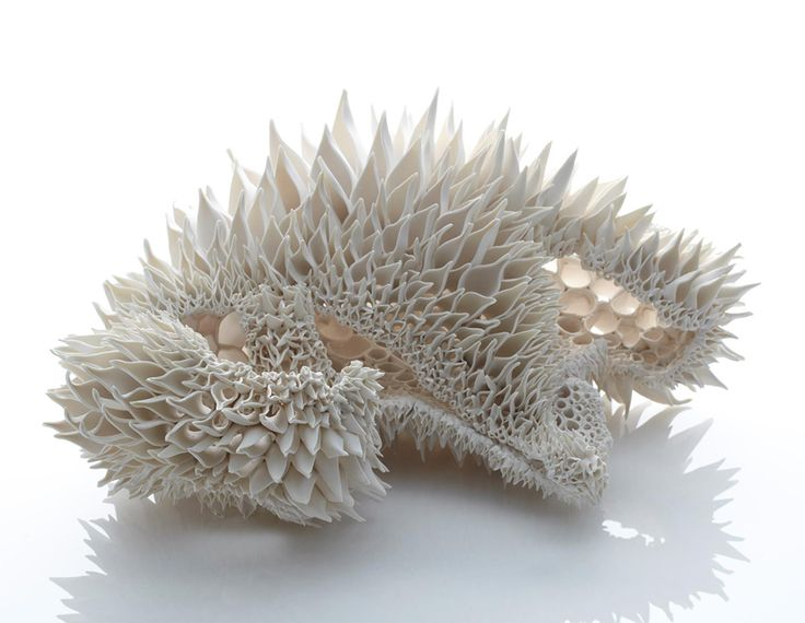Irish artist Nuala O'Donovan sculpts intricate hand-built porcelain forms that resemble fractal patterns found in nature. Borrowing from shapes found in coral, teasel flowers, and pinecones, O'Donovan examines not only patterns, but irregularities that arise from random or unexpected events. From he
